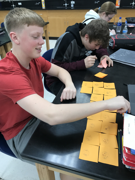 Biology students constructing flip books to illustrate the stages of mitosis.