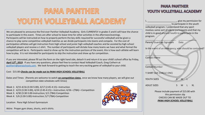 Youth Volleyball Academy Flier