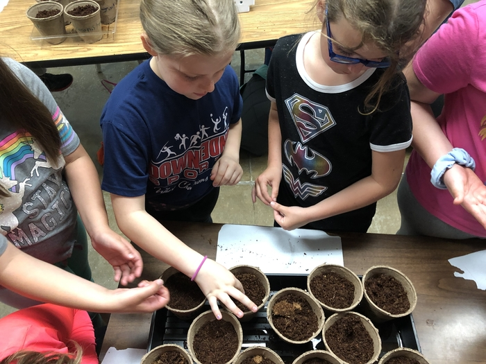 Students planting their seeds.  They could choose from cantaloupe or cucumber seeds.