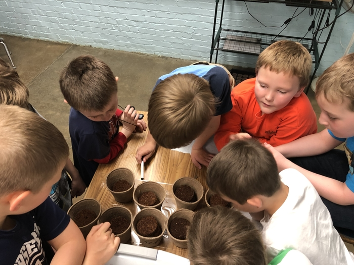 "Watching the soil disks get bigger. One student exclaimed ""its absorbing the water and growing""."