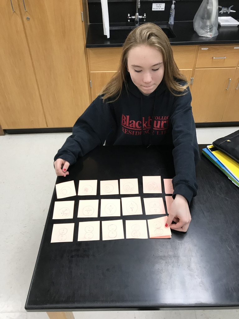Biology student constructing a mitosis flipbook.